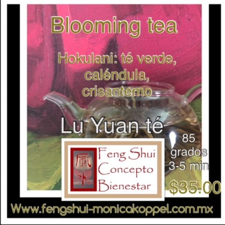 TE ARTISTICO, BLOOMING TEA